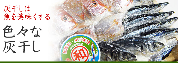 西出水産の「灰干乾燥(灰干し)」は「さんま」だけではありません。アジ、鯖(サバ)、鯛(タイ)、イシモチ(グチ)、イサキ(イサギ)など色々な素材(魚)で「灰干乾燥(灰干し)」が出来ます。お客様の希望によりどんな魚でも灰干でお届けします。